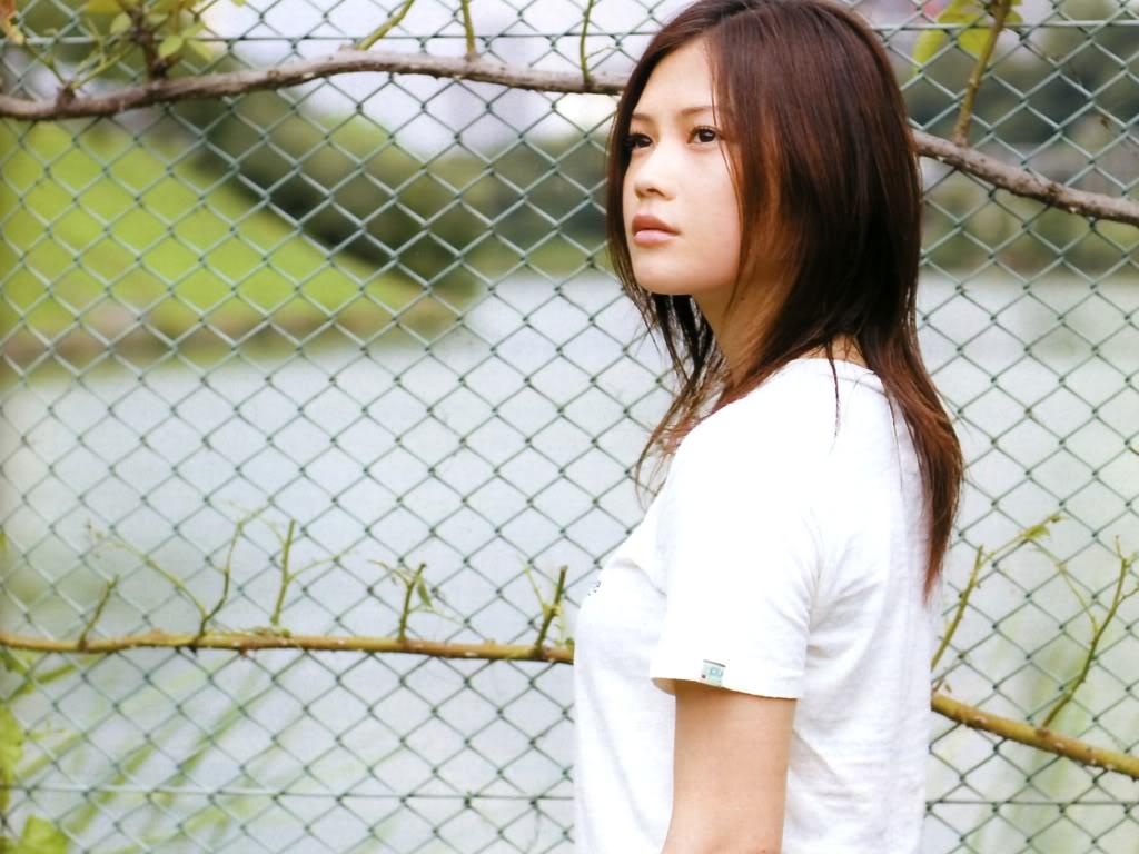 yui-fence